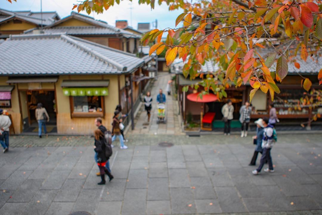 kyoto,ねねの道