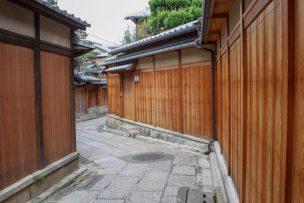 Free data added DL商用利用可(2018.7.3)京都秋風景